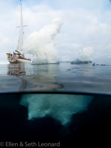 Celeste and a bit of sea ice