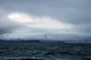 St Lawrence Island