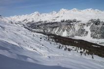 Where's Waldo- Ellen skiing in Engadin