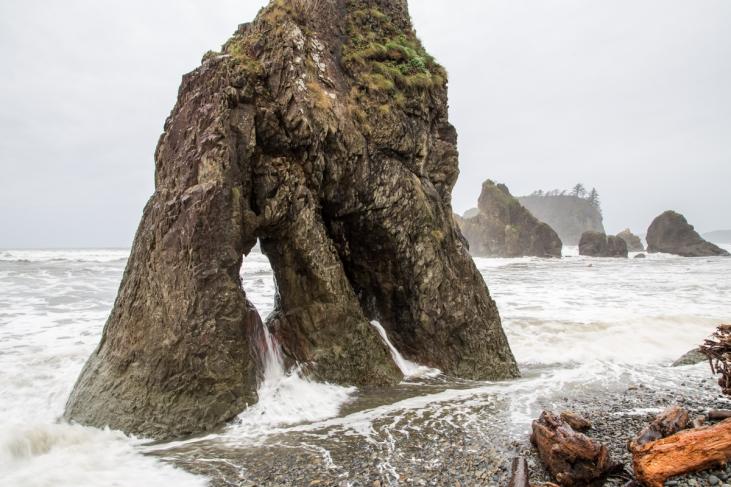 sea-stacks-olympic-coast
