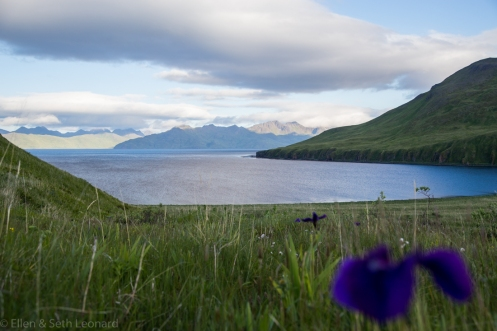 Late Afternoon in the Aleutians