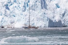 Nosing up to a glacier