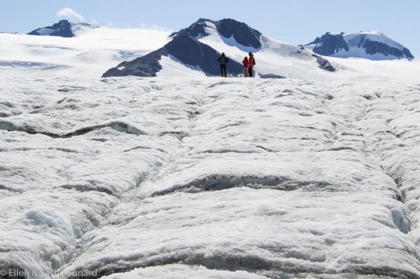 On Harding Icefield