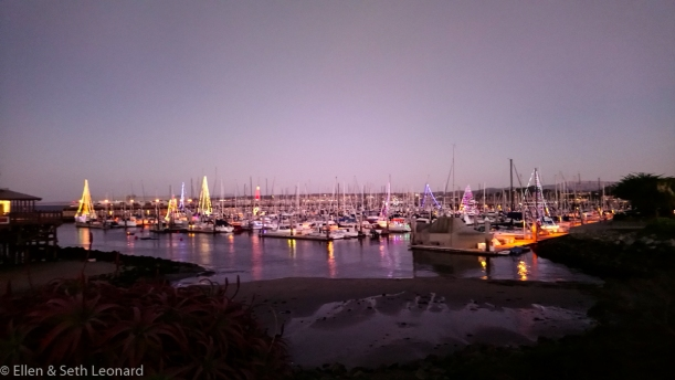 Christmas lights in Monterey