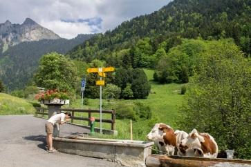 Alpage fountain