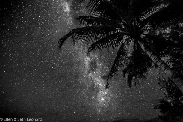 Milky Way over Palm